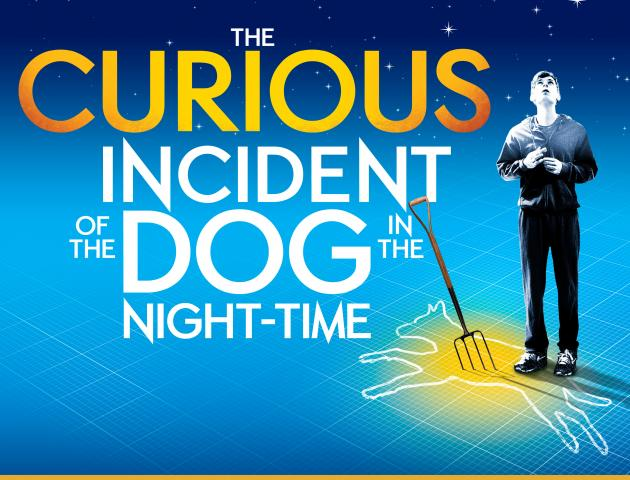 NT Live poster featuring boy looking to the stars with chalk outline of a cow at his feet