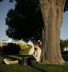 Student Studying On Campus by tree