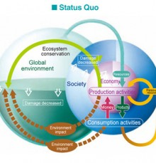 The environmental cycle - status Quo