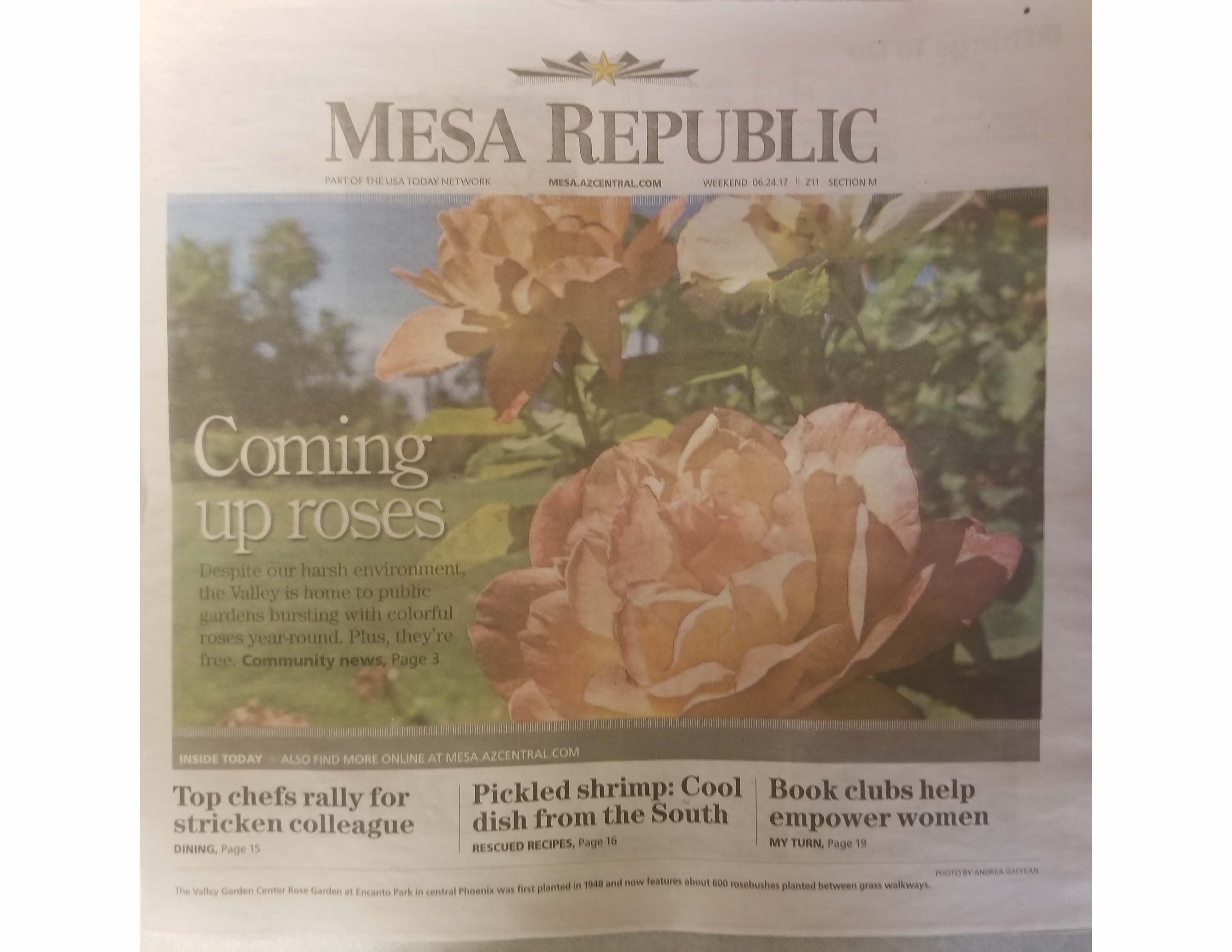 Coming Up Roses | Media Coverage | Mesa Community College