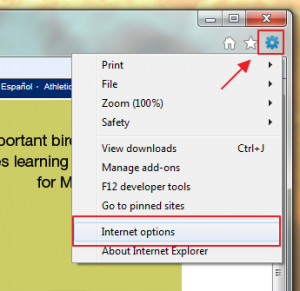 Internet Explorer Options Menu