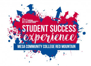 Student Success Experience logo