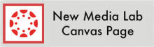 Click here to check out the District NMLE Canvas Page